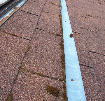 Algae Indianapolis Roof Cleaning Zinc Strip