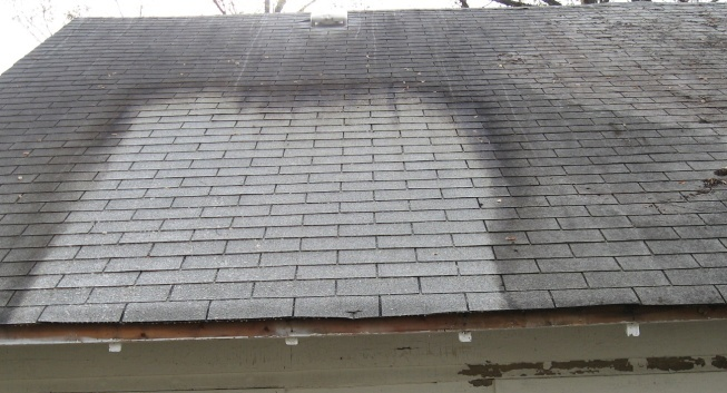 Indy Power Wash Roof Cleaning Algae Mold And Moss